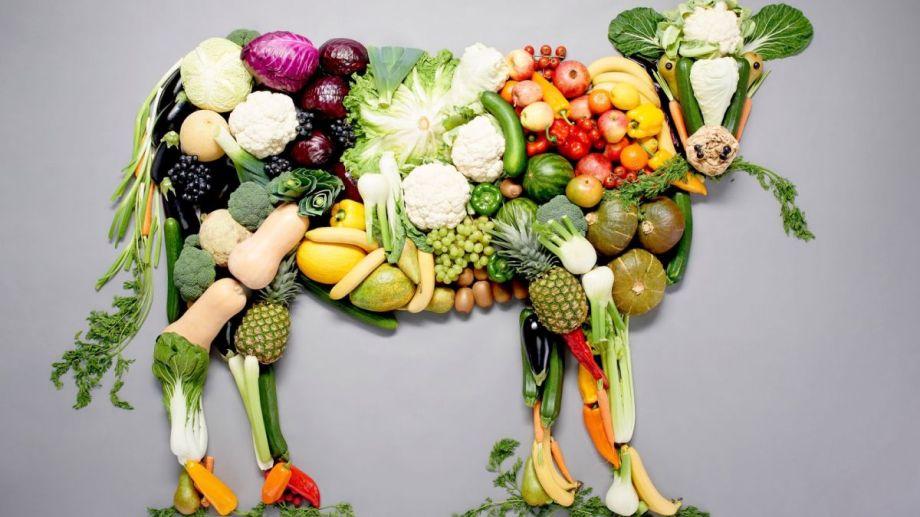 Desmontando los mitos sobre una alimentación 100% Plant-based